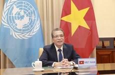 推动越南与非洲及中东地区国家合作走向务实和高效