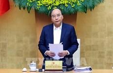 阮春福总理:努力将越南发展成为农业大国