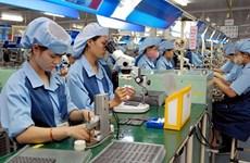 河内市努力实现经济复苏:为下一阶段发展注入动力(二)
