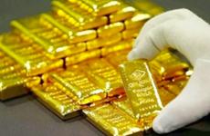 31日越南国内市场黄金价格突破5600万越盾关口
