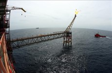 2021年越俄油气联营公司力争石油和凝析油开采量达近300万吨的目标
