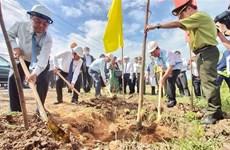 张和平副总理:植树造林为主动预防和抵御自然灾害等作出重要贡献