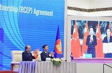 迎来《区域全面经济伙伴关系协定》的机遇