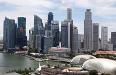受疫情影响 新加坡经济创1965年以来最大跌幅