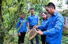 越南青联协助开展近2000项青年创新创业项目