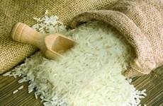越南为何进口大米?