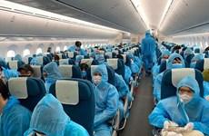 暂停从英国、南非前往越南的航班
