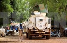 越南与联合国安理会:越南强调了保护人民  以全面综合方式解决马里问题