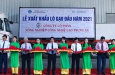2021年初越南向新加坡和马来西亚出口1600吨大米