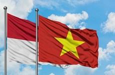 促进越南与印尼的友谊
