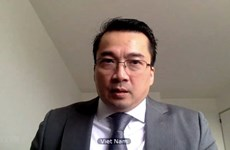 越南强调联合国与阿拉伯国家联盟加强合作的必要性