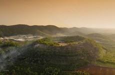 2020年自然资源与环境领域十大事件出炉