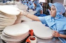 春卷皮制作村忙忙碌碌   为春节市场做好准备
