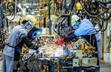 欧洲企业对2021年越南经济持乐观态度