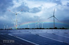 越南政府核查太阳能发展事宜