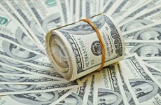 25日上午越盾对美元汇率中间价小幅波动