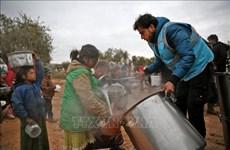 越南与联合国安理会:对叙利亚的严重人道主义危机表示担忧
