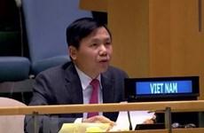 越南代表出席缅甸问题联大非正式会议并阐述越方立场
