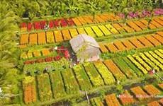 通过数字平台广泛宣传推介越南风土人情之美
