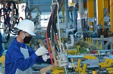 印尼企业加大对同奈省的投资