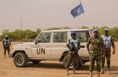 越南与联合国安理会:越南呼吁促进南苏丹过渡进程