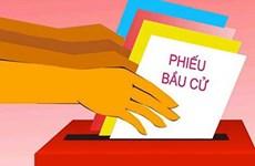 为越南第十五届国会和各级人民议会选举成功举行做好准备