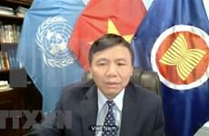 越南与联合国安理会: 越南呼吁缅甸结束暴力并努力寻求适当的解决方案