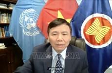 越南与联合国安理会:越南一向重视妇女的作用