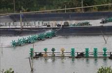 前江省努力扩大出口水产养殖面积