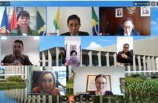 巴西高度评价东盟各国在亚太地区中的中心作用