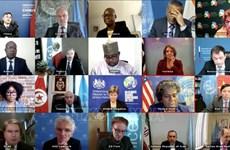 越南与联合国安理会:对叙利亚人道主义危机表示关切