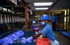 东盟与韩国促进劳工与就业合作