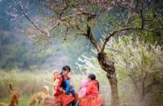 来西北地区体验浪漫自然景色