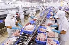 越南经济中长期前景乐观