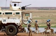 越南与联合国安理会:越南呼吁有关各方为推进马里和平进程作出更大的努力