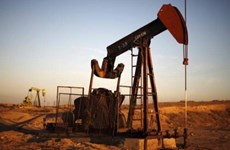 越南与油价、通货膨胀