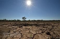 环保:促进氢气使用 面向东盟碳中和