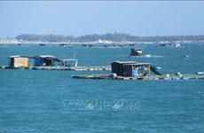促进海洋资源有效开发利用和可持续发展