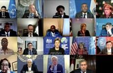 越南与联合国安理会:越南对也门,埃塞俄比亚局势表示关切