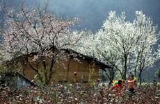 木州——体验游爱好者最爱的目的地