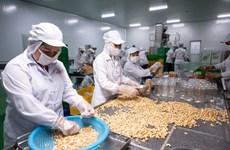越南与波兰在农产品与食品贸易领域中的合作潜力巨大