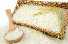 越南对英国的大米出口量猛增 但需要加强品牌建设