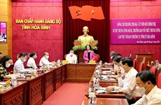 国会和人民议会换届选举:张氏梅视察和平省换届选举准备工作