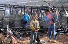 越南与联合国安理会:越南呼吁在新冠肺炎疫情的背景下加强保护冲突中的儿童