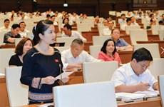 越南计划将少数民族国会代表比例提升至18%