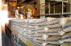 越南部分建材产品投资力度已接近2025年目标