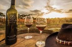 澳大利亚葡萄酒生产商希望进军越南市场