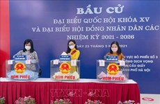 外国媒体纷纷报道越南国会及各级人民议会换届选举