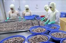 今年前5个月坚江省出口额同比增长近16%