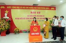 越南大多数地区选民投票率较高